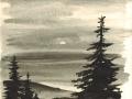 Wald im Mondlicht (1954)